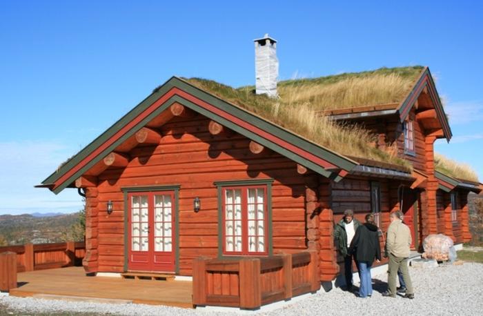 Фото - Внешний вид и технология строительства норвежского дома